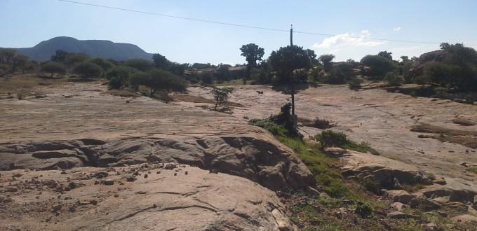 En parcourant le Kwazulu