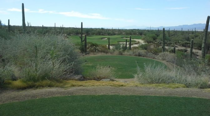 THE GOLF AT DOVE MOUNTAIN